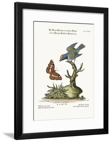 The Golden-Winged Flycatcher, and the Spotted Tortoise Butterfly, 1749-73-George Edwards-Framed Art Print