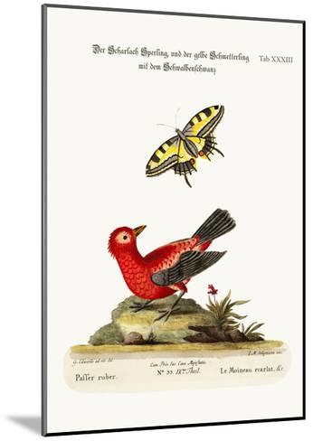 The Scarlet Sparrow and the Yellow Swallow-Tailed Butterfly, 1749-73-George Edwards-Mounted Giclee Print