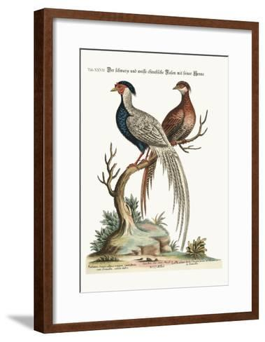 The Black and White Chinese Cock Pheasant with its Hen, 1749-73-George Edwards-Framed Art Print
