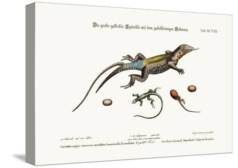 The Great Spotted Lizard with a Forked Tail, 1749-73-George Edwards-Stretched Canvas Print
