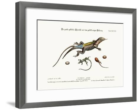 The Great Spotted Lizard with a Forked Tail, 1749-73-George Edwards-Framed Art Print