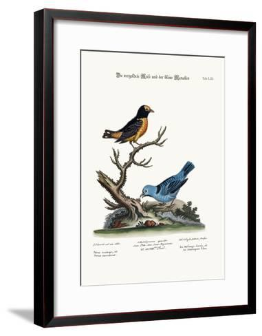 The Golden Tit-Mouse, and the Blue Manakin, 1749-73-George Edwards-Framed Art Print