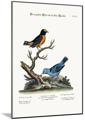 The Golden Tit-Mouse, and the Blue Manakin, 1749-73-George Edwards-Mounted Giclee Print