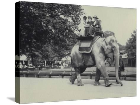 Three Ladies Being Given a Ride on an Asian Elephant, Lead by a Keeper, at London Zoo, May 1914-Frederick William Bond-Stretched Canvas Print