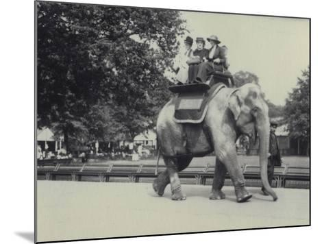 Three Ladies Being Given a Ride on an Asian Elephant, Lead by a Keeper, at London Zoo, May 1914-Frederick William Bond-Mounted Photographic Print
