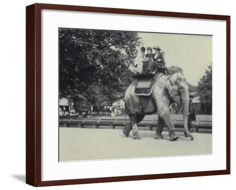 Three Ladies Being Given a Ride on an Asian Elephant, Lead by a Keeper, at London Zoo, May 1914-Frederick William Bond-Framed Art Print