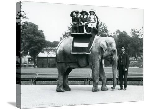 A Female Indian Elephant 'Nellie', with Keeper, Giving Children a Ride at London Zoo, May 1914-Frederick William Bond-Stretched Canvas Print