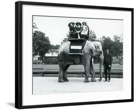 A Female Indian Elephant 'Nellie', with Keeper, Giving Children a Ride at London Zoo, May 1914-Frederick William Bond-Framed Art Print