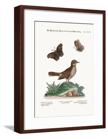 The Lark from Pensilvania, and the Brown Butterfly, 1749-73-George Edwards-Framed Art Print