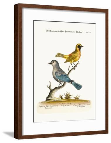 The Sayacu, and the Guira Guacuberaba of Marcgrave, 1749-73-George Edwards-Framed Art Print