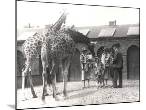 Giraffes and Visitors at Zsl London Zoo, from July 1926-Frederick William Bond-Mounted Photographic Print