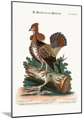 The Ruffed Heath-Cock or Grous, 1749-73-George Edwards-Mounted Giclee Print