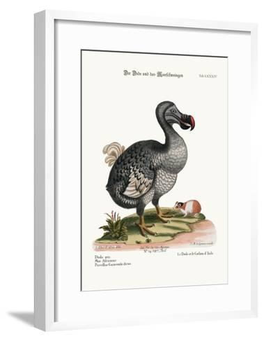 The Dodo, and the Guiney Pig, 1749-73-George Edwards-Framed Art Print