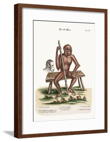 The Man of the Woods, 1749-73-George Edwards-Framed Art Print