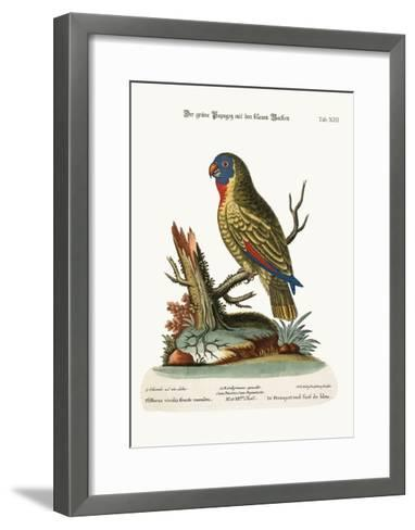 The Blue-Faced Green Parrot, 1749-73-George Edwards-Framed Art Print