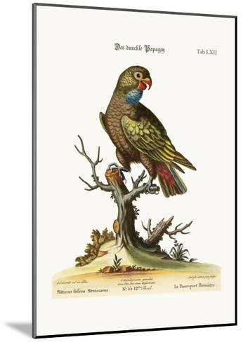 The Dusky Parrot, 1749-73-George Edwards-Mounted Giclee Print