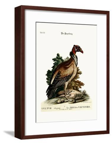 The King of the Vultures, 1749-73-George Edwards-Framed Art Print