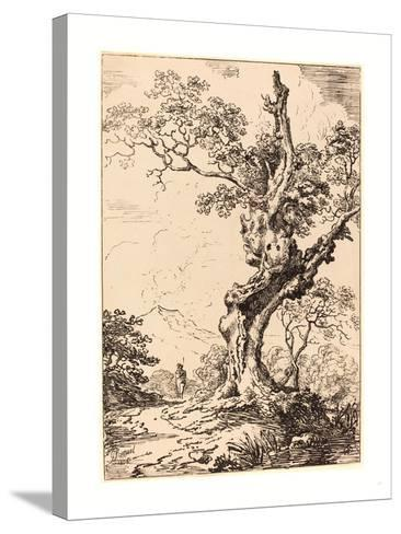Study of an Old Oak Tree, Water on Right, a Man on Left, 1806, Pen-And-Tusche Lithograph-George Samuel-Stretched Canvas Print