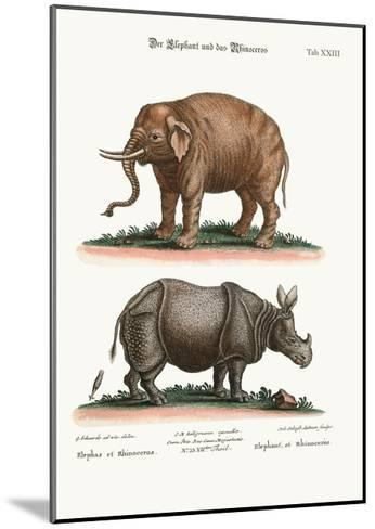The Elephant and the Rhinoceros, 1749-73-George Edwards-Mounted Giclee Print