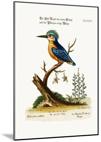 The Crested Kingfisher, 1749-73-George Edwards-Mounted Giclee Print