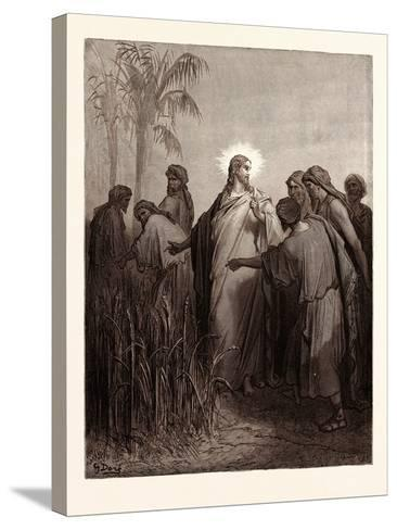 Jesus and His Disciples in the Corn Field-Gustave Dore-Stretched Canvas Print