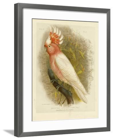 Leadbeater's Cockatoo, 1891-Gracius Broinowski-Framed Art Print