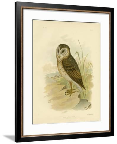Grass Owl, 1891-Gracius Broinowski-Framed Art Print