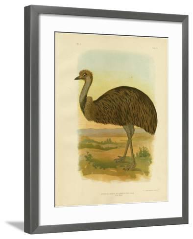 Emu, 1891-Gracius Broinowski-Framed Art Print