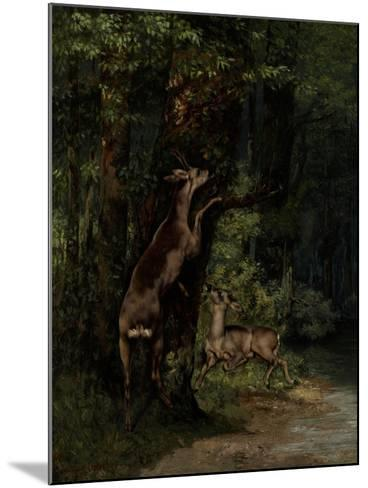 Deer in the Forest, 1868-Gustave Courbet-Mounted Giclee Print