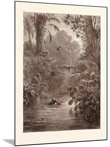 Atala and Chactas Crossing a River-Gustave Dore-Mounted Giclee Print