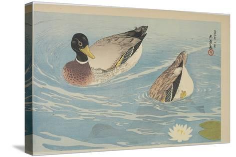 Ducks, August 1920-Goyo Hashiguchi-Stretched Canvas Print