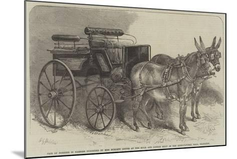 Pair of Donkeys in Harness Exhibited by Miss Burdett Coutts at the Mule and Donkey Show in the Agri-Harden Sidney Melville-Mounted Giclee Print