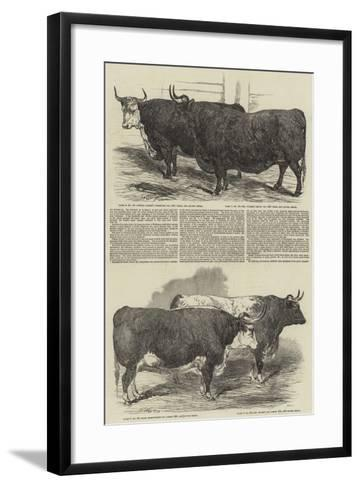 The Annual Exhibition of the Smithfield Club-Harrison William Weir-Framed Art Print