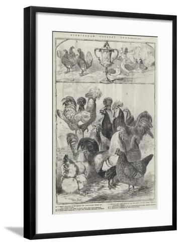 Birmingham Poultry Show-Harrison William Weir-Framed Art Print