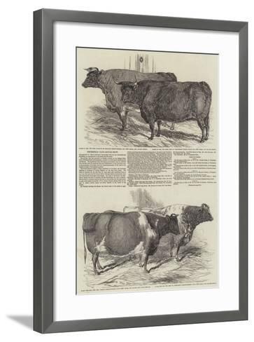 Smithfield Club Cattle Show-Harrison William Weir-Framed Art Print