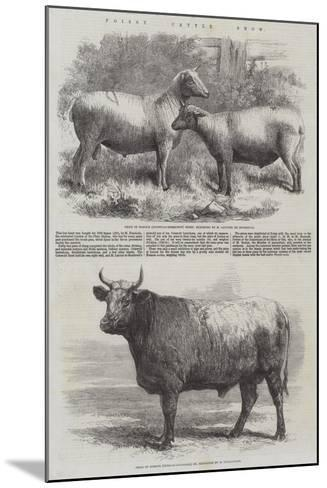 Poissy Cattle Show-Harrison William Weir-Mounted Giclee Print