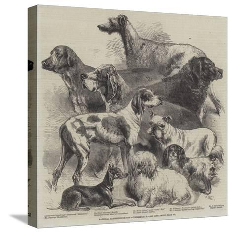National Exhibition of Dogs at Birmingham-Harrison William Weir-Stretched Canvas Print