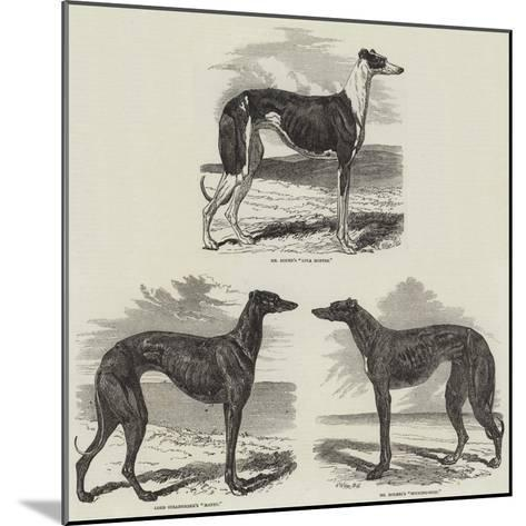 Newmarket Coursing Meeting-Harrison William Weir-Mounted Giclee Print