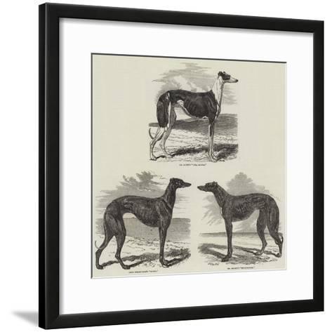 Newmarket Coursing Meeting-Harrison William Weir-Framed Art Print