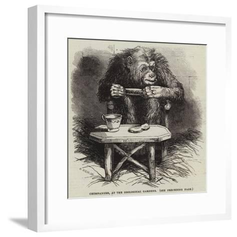 Chimpanzee, at the Zoological Gardens-Harrison William Weir-Framed Art Print