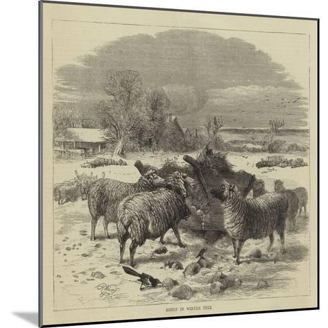 Sheep in Winter Time-Harrison William Weir-Mounted Giclee Print