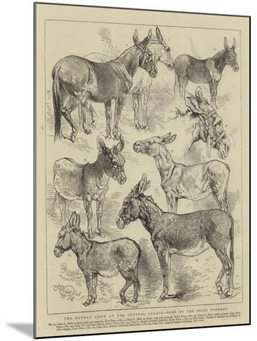 The Donkey Show at the Crystal Palace, Some of the Prize Winners-Harrison William Weir-Mounted Giclee Print