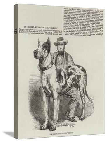 The Great American Dog Prince-Harrison William Weir-Stretched Canvas Print