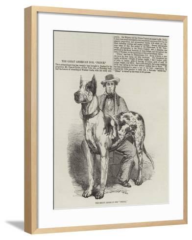 The Great American Dog Prince-Harrison William Weir-Framed Art Print