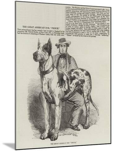 The Great American Dog Prince-Harrison William Weir-Mounted Giclee Print