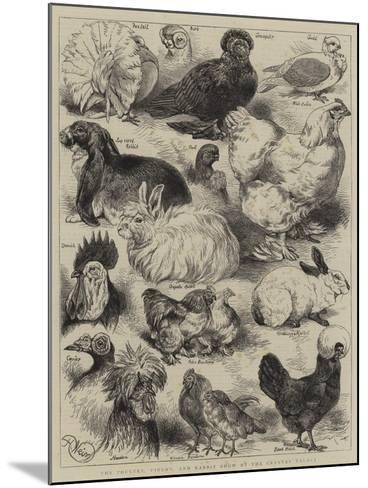 The Poultry, Pigeon, and Rabbit Show at the Crystal Palace-Harrison William Weir-Mounted Giclee Print