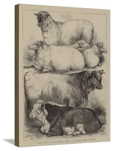 The Royal Agricultural Show at Oxford, Prize Animals-Harrison William Weir-Stretched Canvas Print