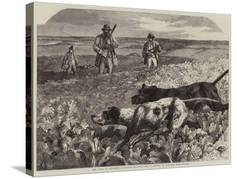 The First of September, Partridge-Shooting-Harrison William Weir-Stretched Canvas Print