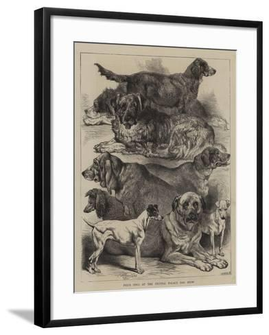 Prize Dogs at the Crystal Palace Dog Show-Harrison William Weir-Framed Art Print