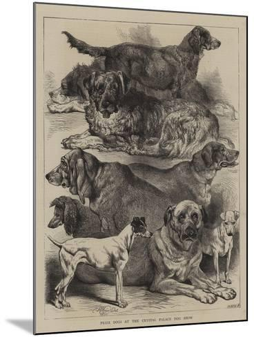 Prize Dogs at the Crystal Palace Dog Show-Harrison William Weir-Mounted Giclee Print